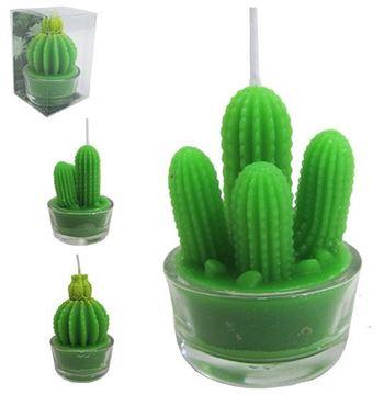 Imagem de Vela Decorativa - Cactus Sortidos